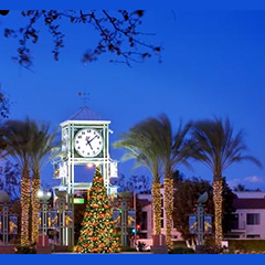Garden Grove Lights Christmas Tree